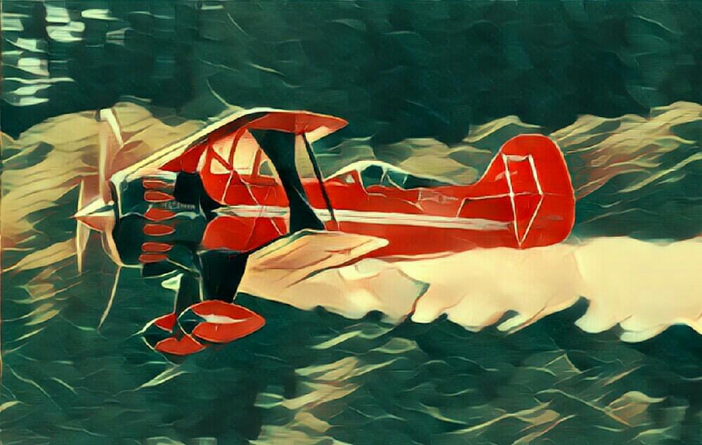 Flugtag2010